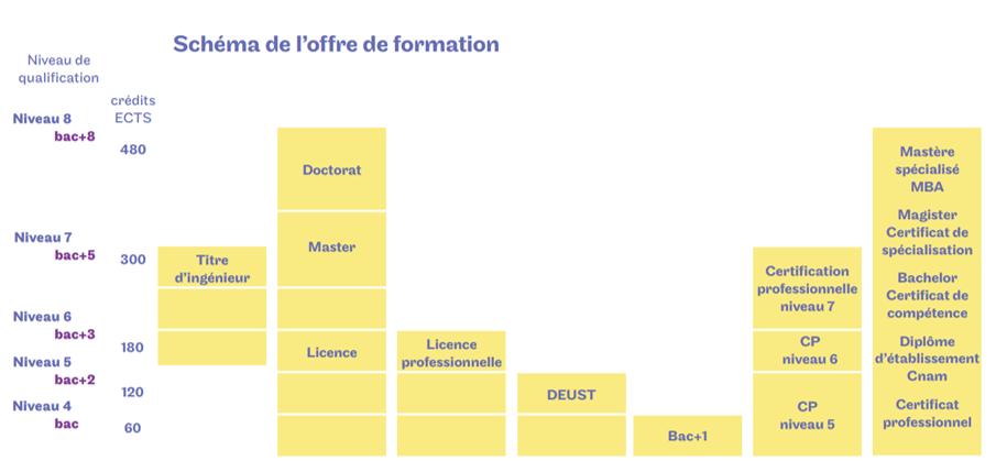 Diagramme des diplômes